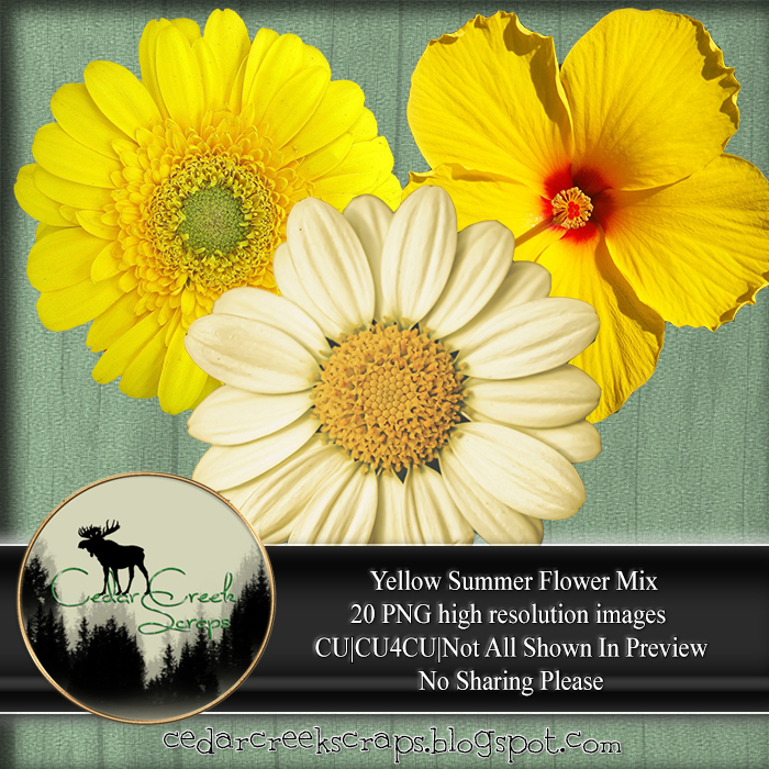 CCD-Yellow Flowers PNG Pack